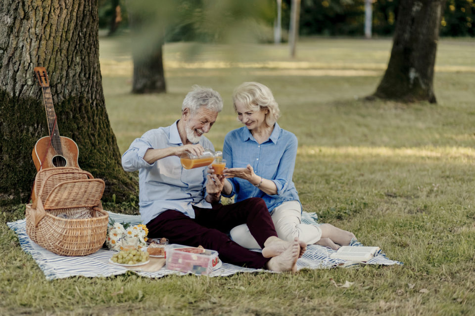 Senior couple having a picnic under a tree